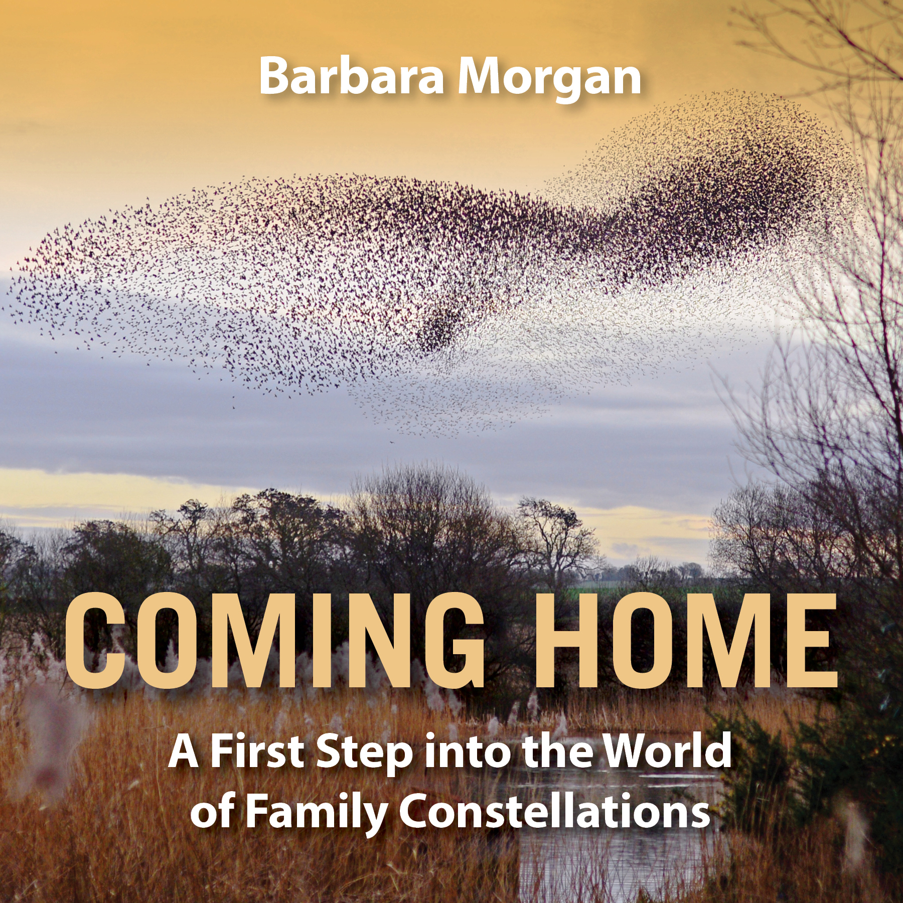 Coming Home-Cover.jpg