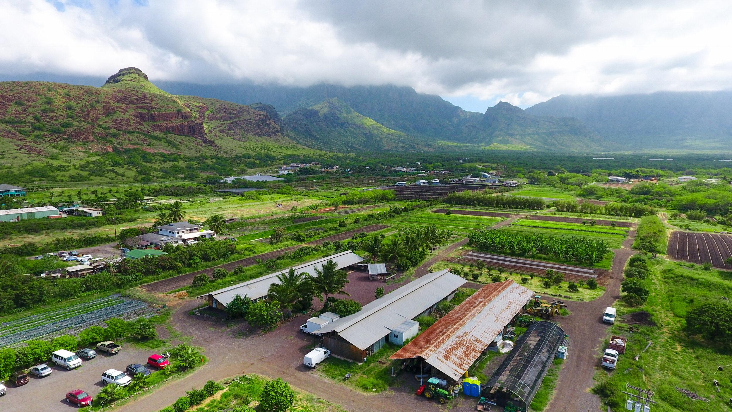 Our Farm Ma O Organic Farms