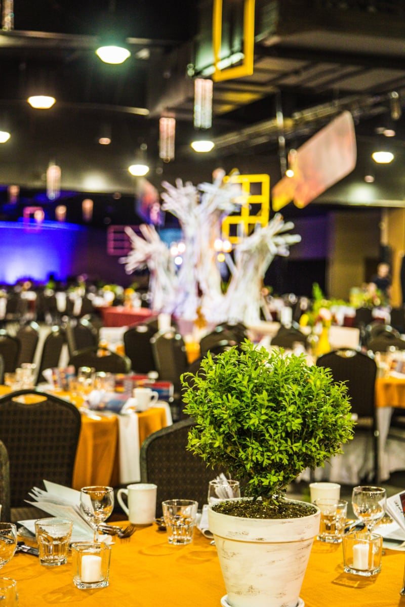 Mayfair Event design decoration Billings Mt.jpg