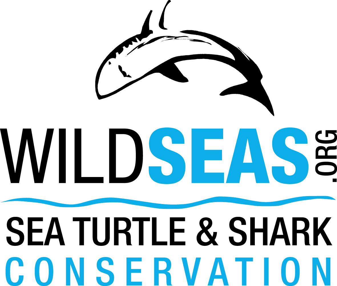 wildseas logo.jpg