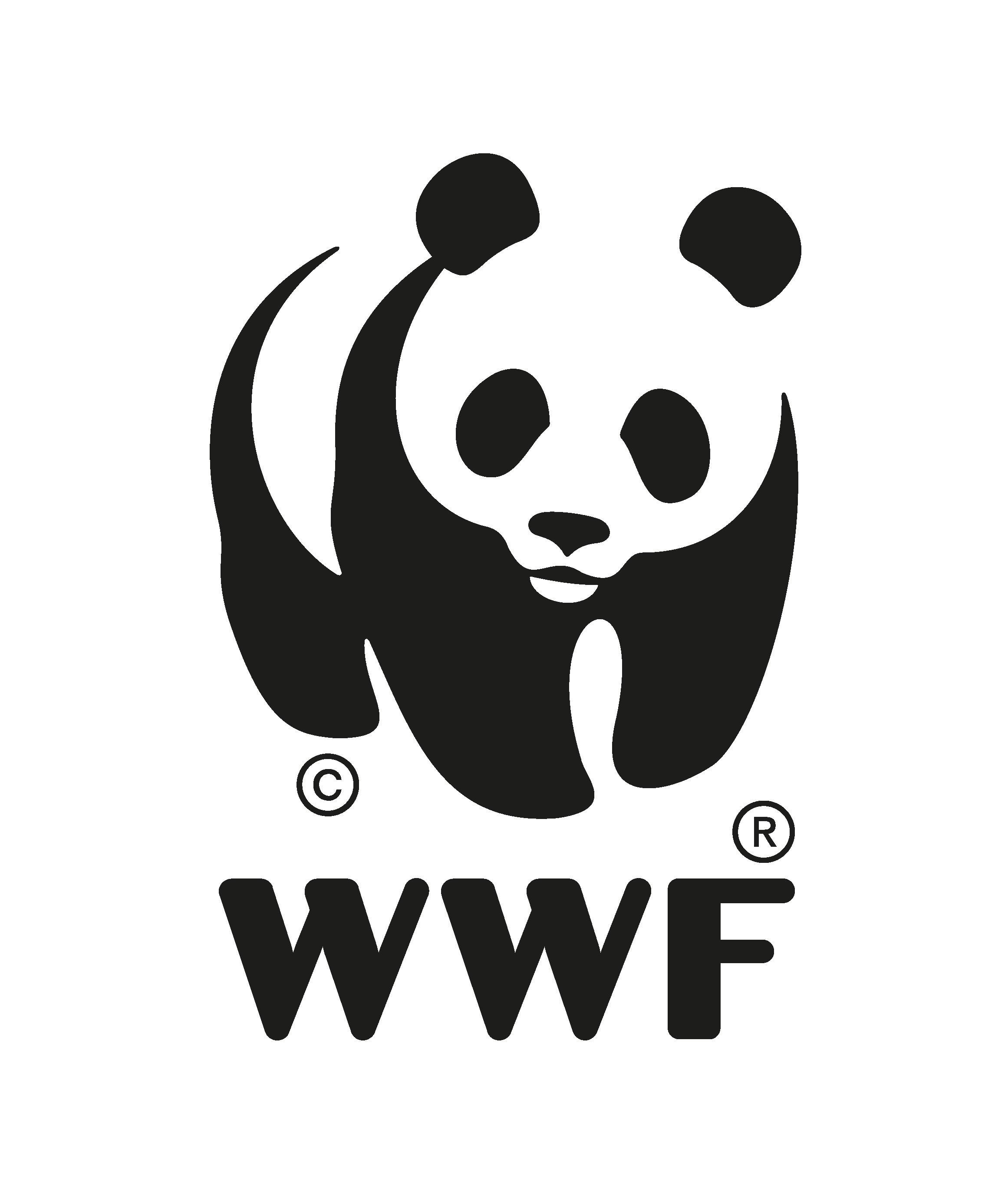 Logo Panda Transparente-01.png