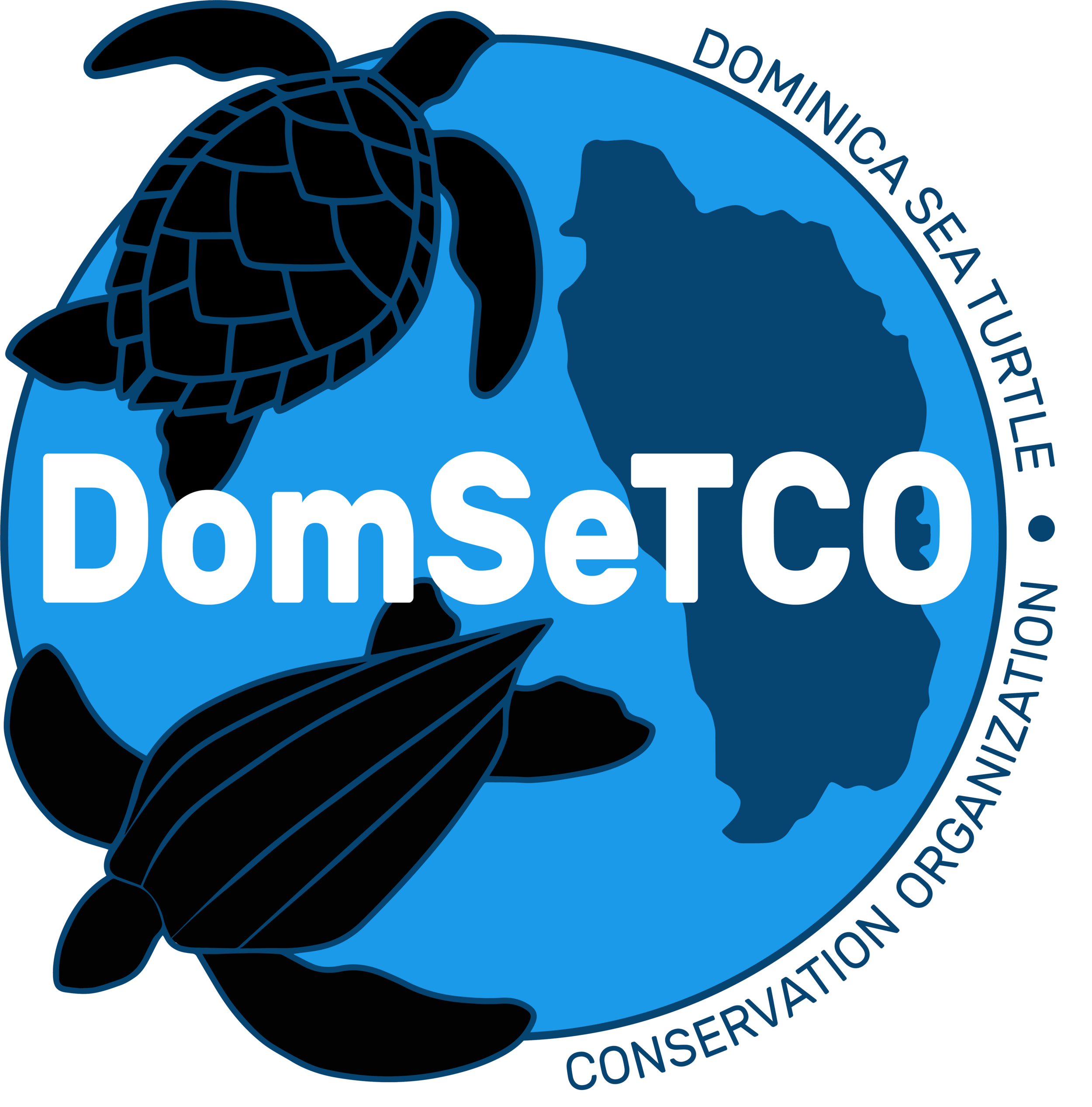 DomSeTCO Logo New.png