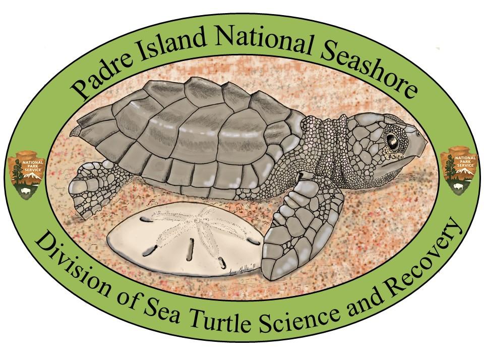 NPS PAIS STSR Logo.jpg