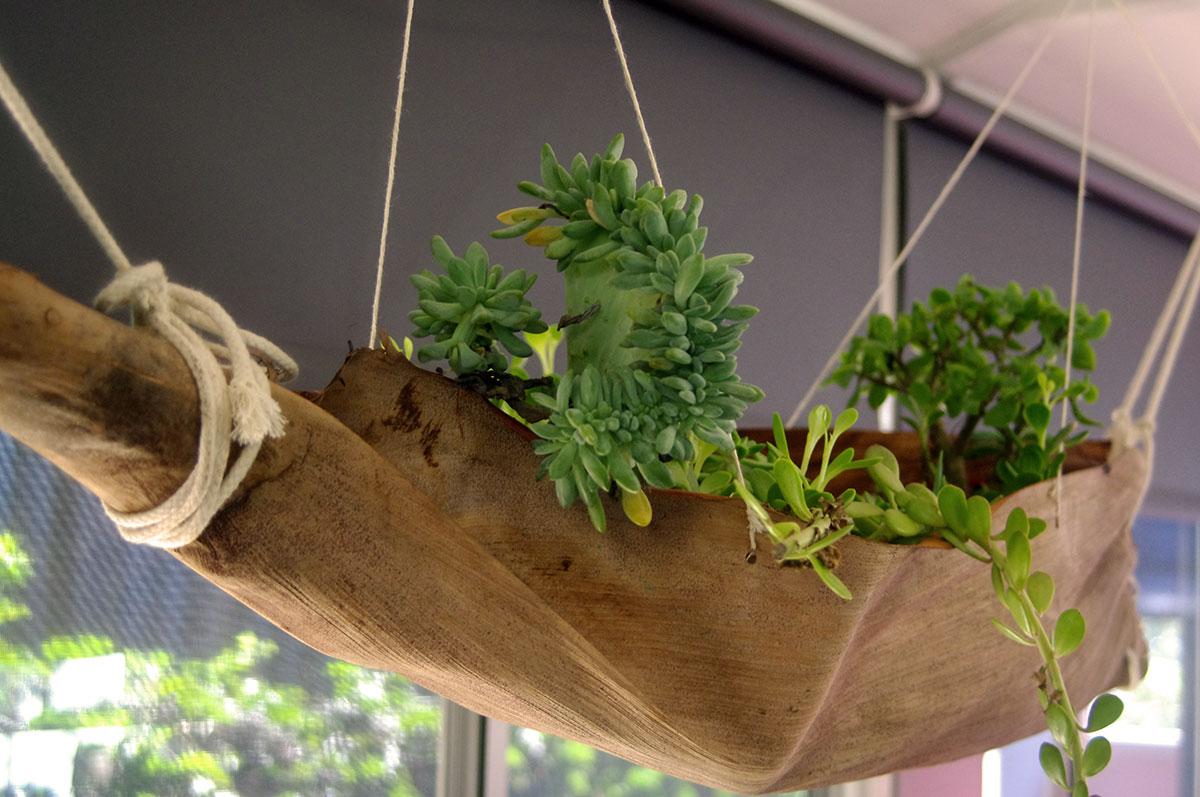 Rosellas Community Preschool plants in hanging basket.jpg