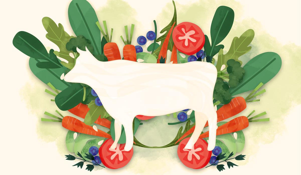 Vegan_02_body-illustration.jpg