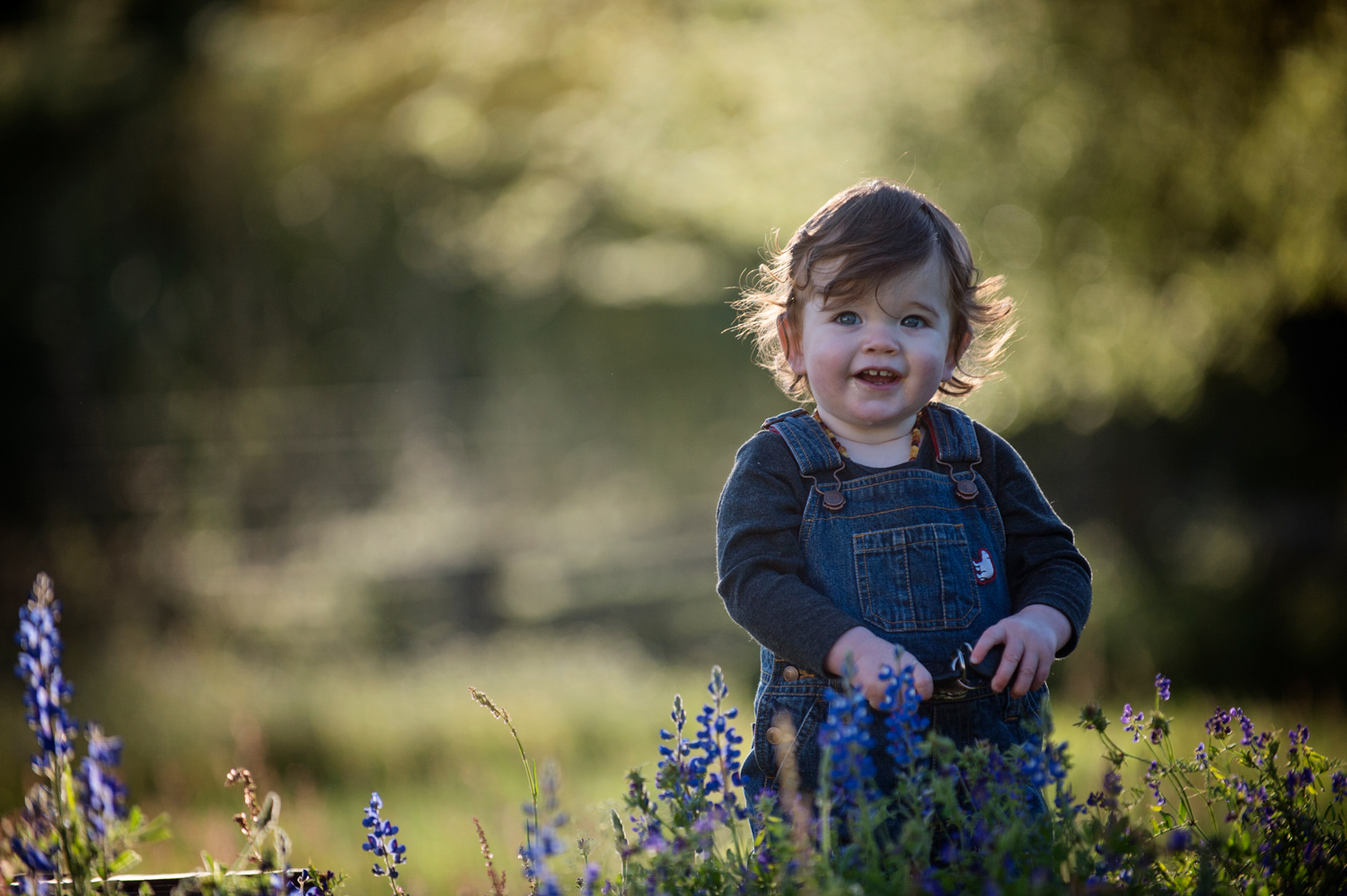 outdoor-field-child-photographer-houston.jpg