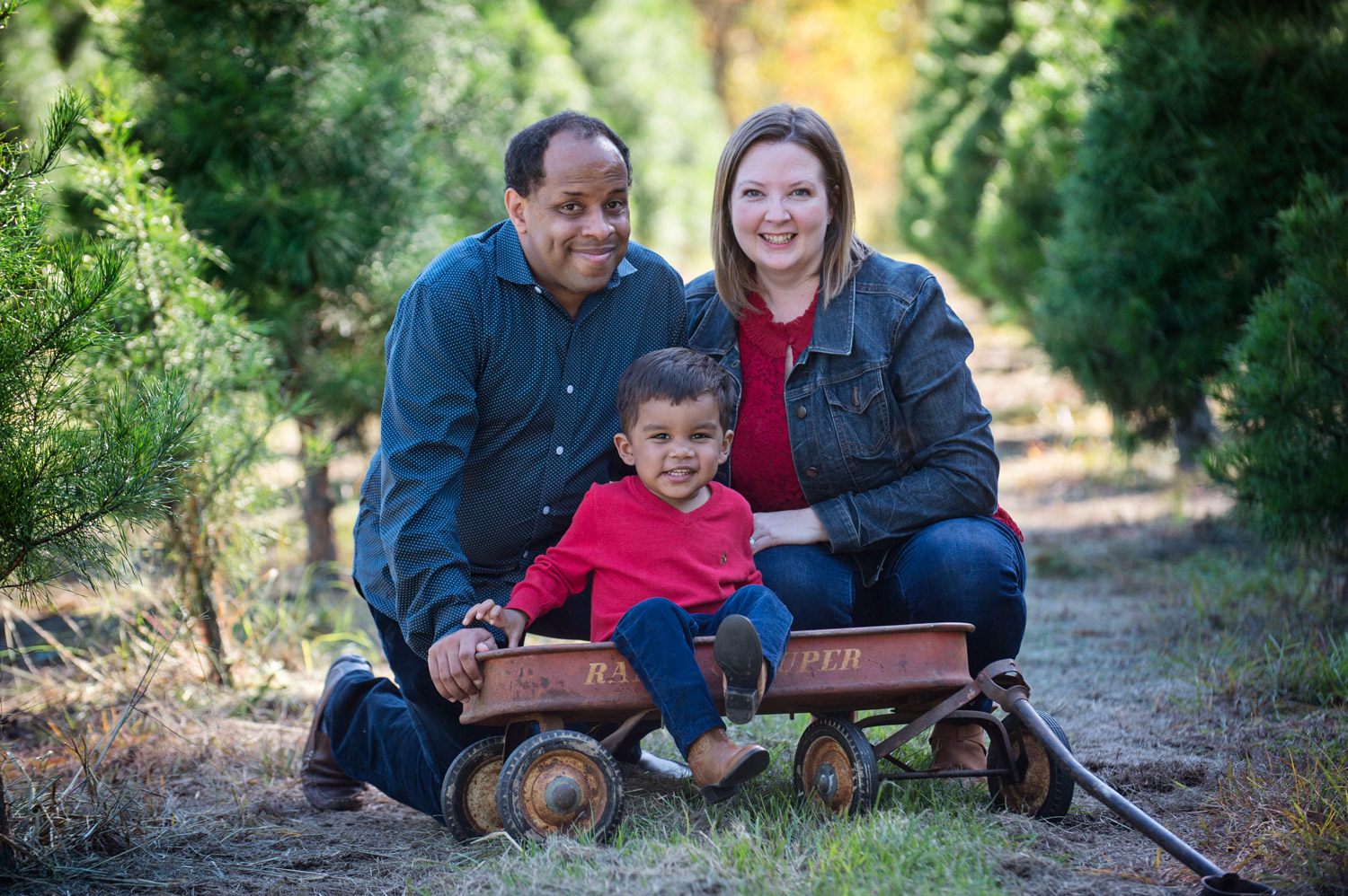 Tree-farm-wagon-family-houston-photographer.jpg