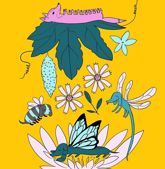 Did you know there's such a thing as a Caterpillar Corgi?  Print Dog Insects from my 2014 exhibition 'Otoshimono ; the lost and found'. #illustration #adobeillustrator #insects #goya #flowers #yellowandpink