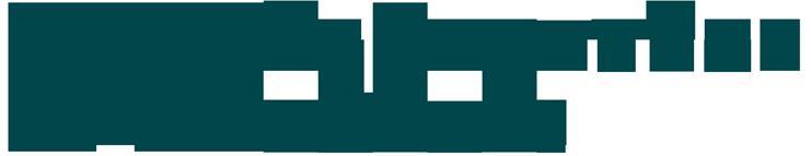 logo-sponsors-BII.png