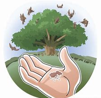 The Parable of the Mustard Seed Mark 4v30-32