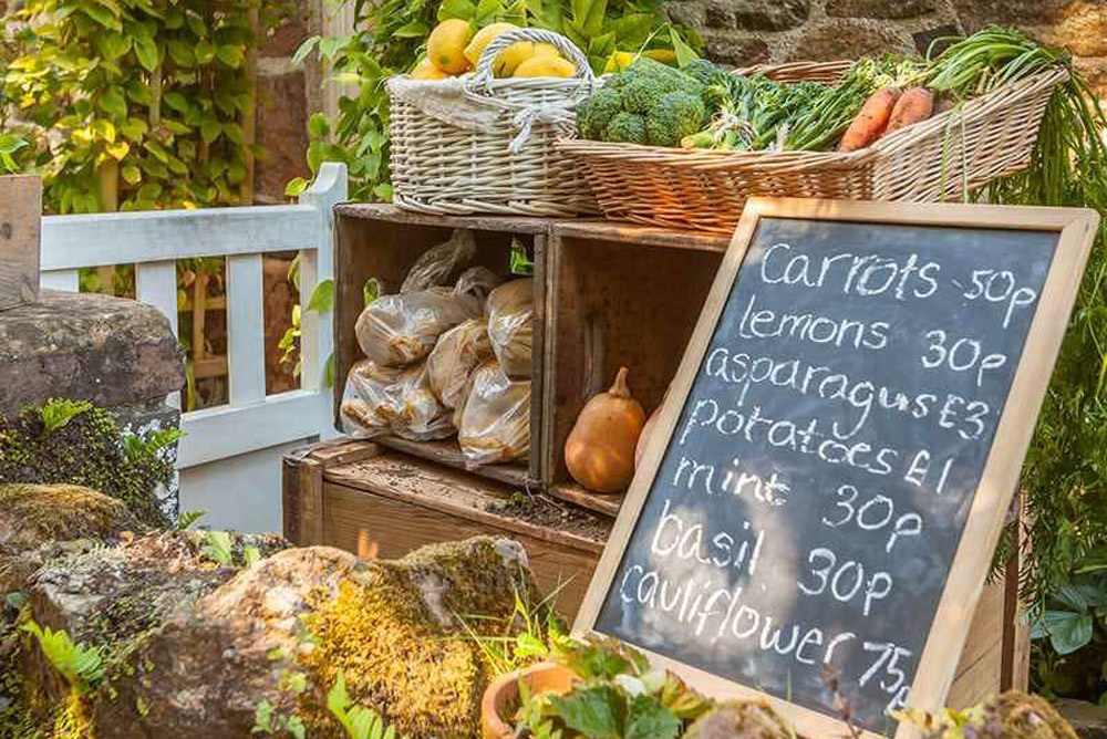 Explore the lanes - Inland you can follow country lanes (Ruette Tranquille) on foot or by bike, perhaps finding a hedge veg stall to stop and buy seasonal produce from local gardens.