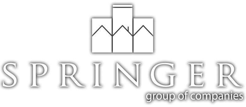 Springer-Logo-White-Dropshadow-4.jpg