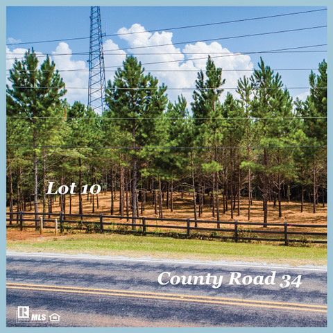 Prime lots in a prime location!! This is a rare opportunity on Hey 34 next to the back entrance to StillWaters. Endless possibilities!! Call me to discuss. . Virginia Pettus, Broker/REALTOR Aronov Realty Lake Martin . #lakemartin #lakemartinalabama #lakemartinwave #businessopportunity #aronov #aronovlakemartin #virginiapettus #
