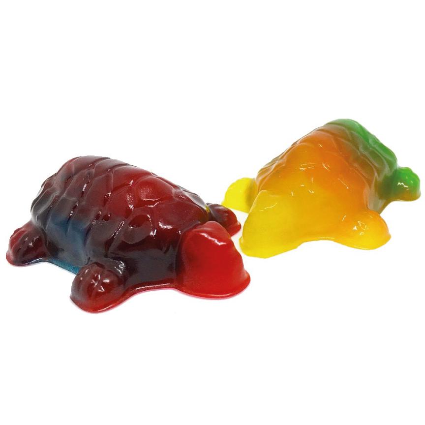 turtle-gummy.jpg