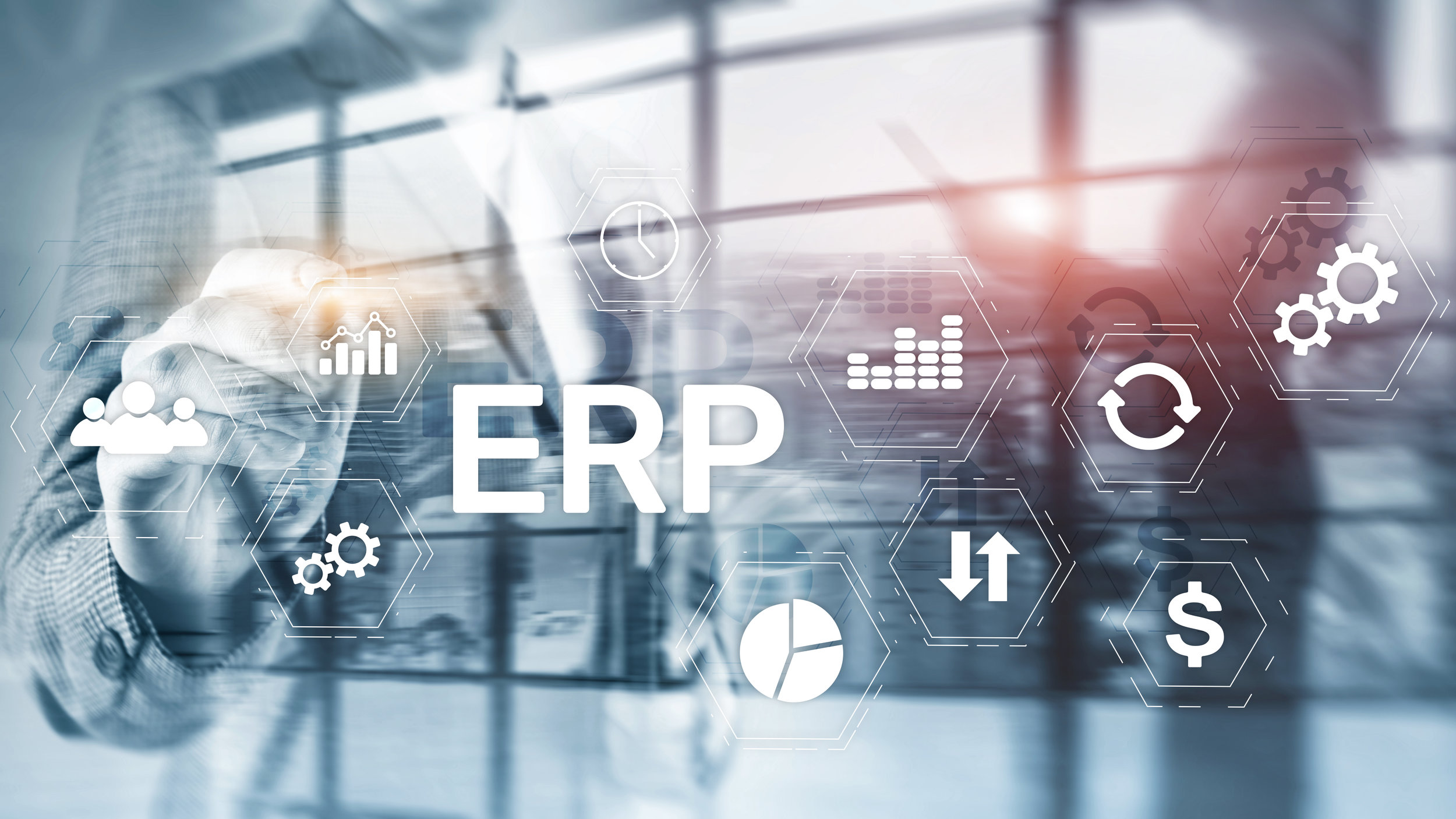 how companies take advantage of ERP software