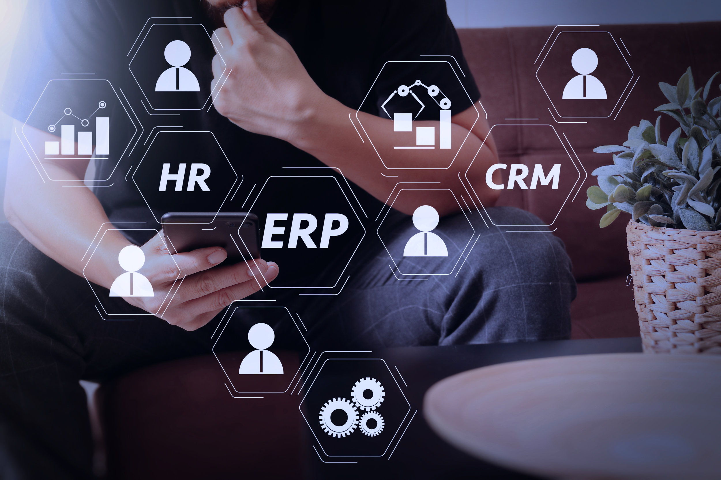 Web Based ERP Software - Advantages And Disadvantages