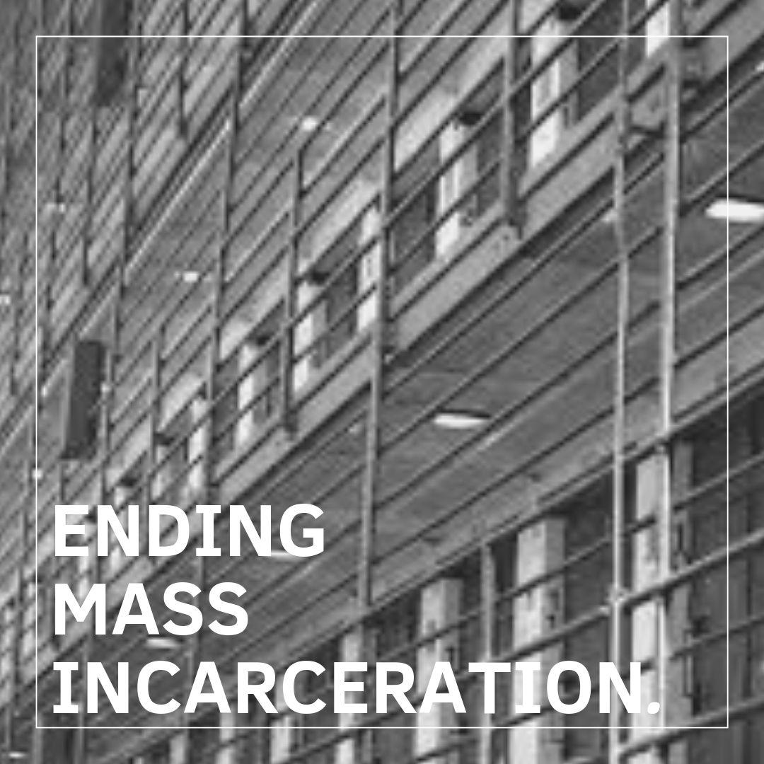 Priority Mass Incarceration (2).jpg