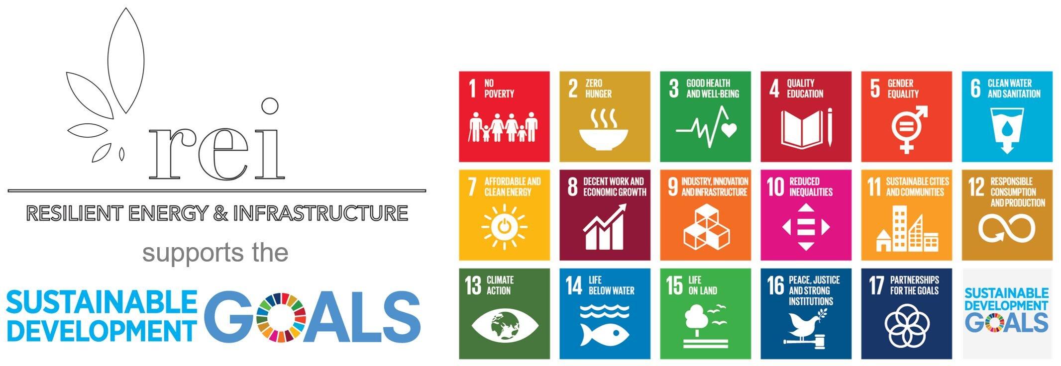 REI re SDGs.JPG