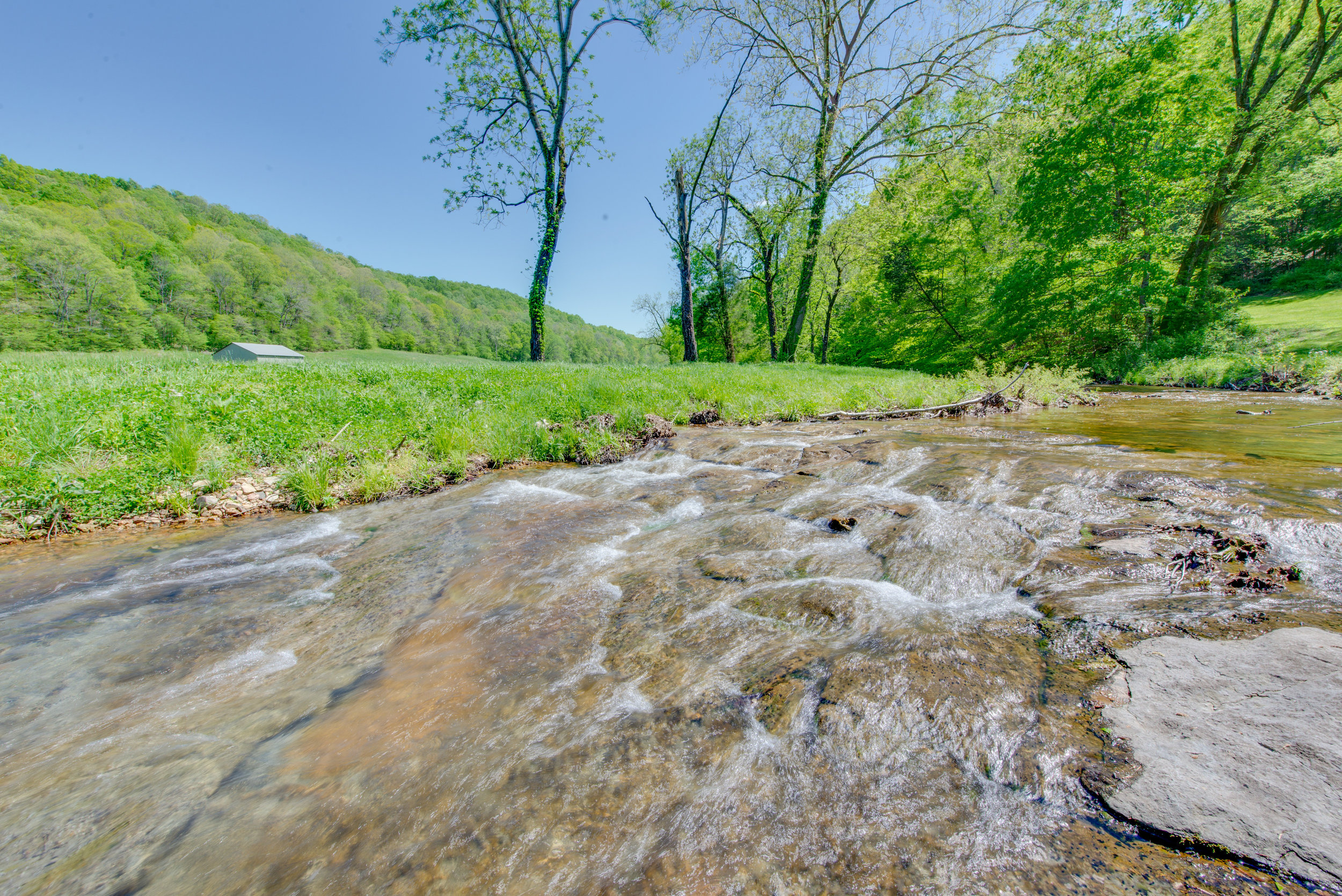 More than seven creeks and streams pass through this property