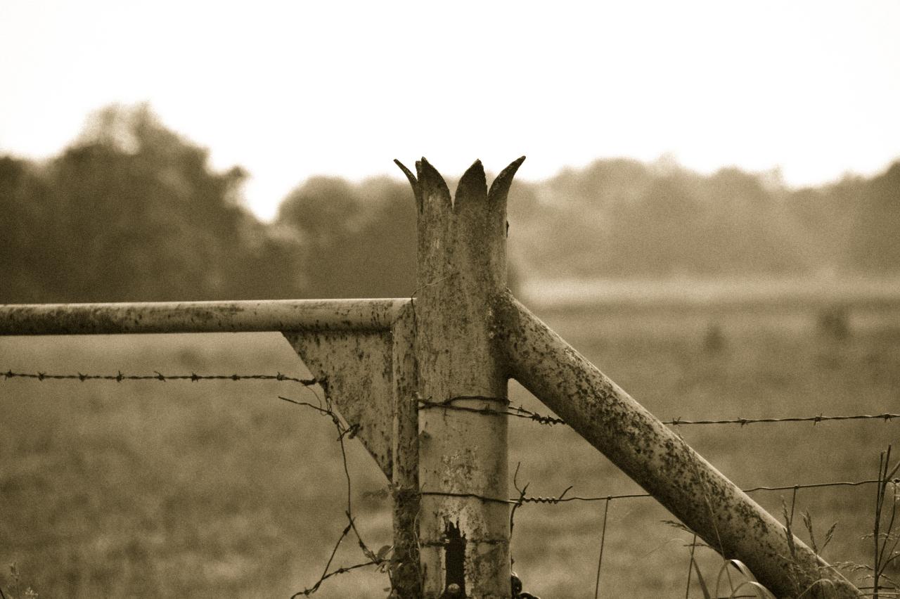 Historic fence post located on the Kingford Farm, Siloam Springs, Arkansas.