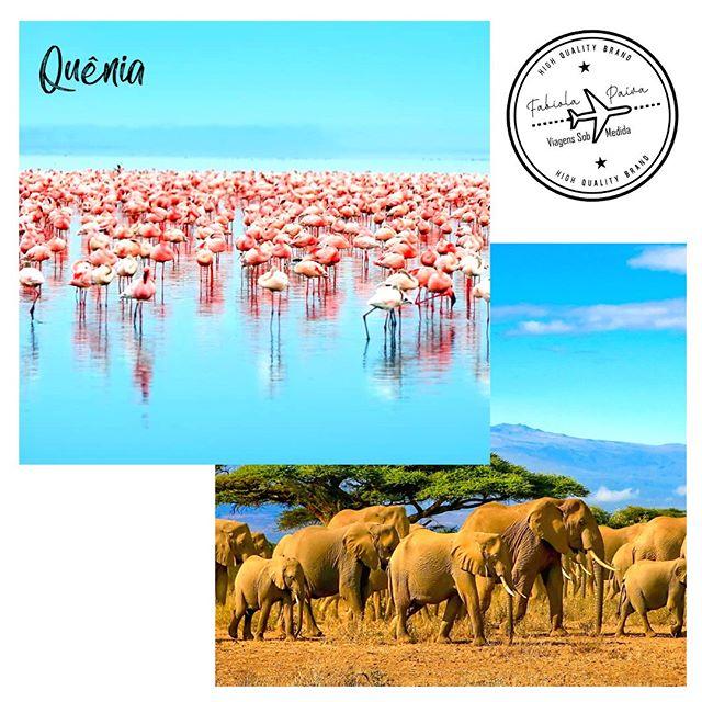 """Dentre os lugares para conhecer na África, o Quênia tem um belo litoral de cerca de 500 quilômetros e savanas, onde ficam as famosas reservas naturais. Acho incrível a visita ao Lago Nakuru e suas águas com pelicanos, cegonhas e flamingos cor de rosa; o Lago Naivasha, para se observar hipopótamos, águias pescadoras e uma vegetação única e variada; e o Lago Turkanda, de águas cor de jade e uma rica variedade de peixes. Gostaria de mais informações sobre paraísos assim? Fale comigo. """"Vivo experiências e as indico."""": 34 99971.0040 (Whatsapp)  #FabiolaPaiva #FabiolaPaivaTur #ViagensSobMedida #Experiencia #Família #ViagememFamília #trip #agentedeturismo #Viagem #Quênia"""