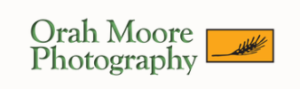 Orah Moore Photography - Wedding, portraits, reunions, lifestyle and custom local photo tours. PO Box 522, Morrisville, VT 05661