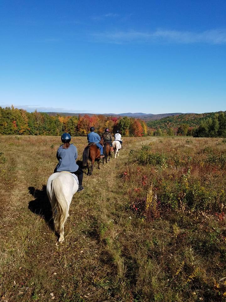 Ladies RidingClub -