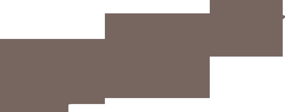 Long Island Map.png