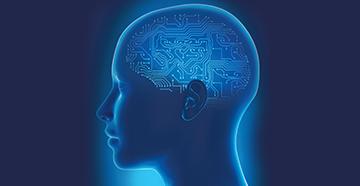 brain hearing.jpg