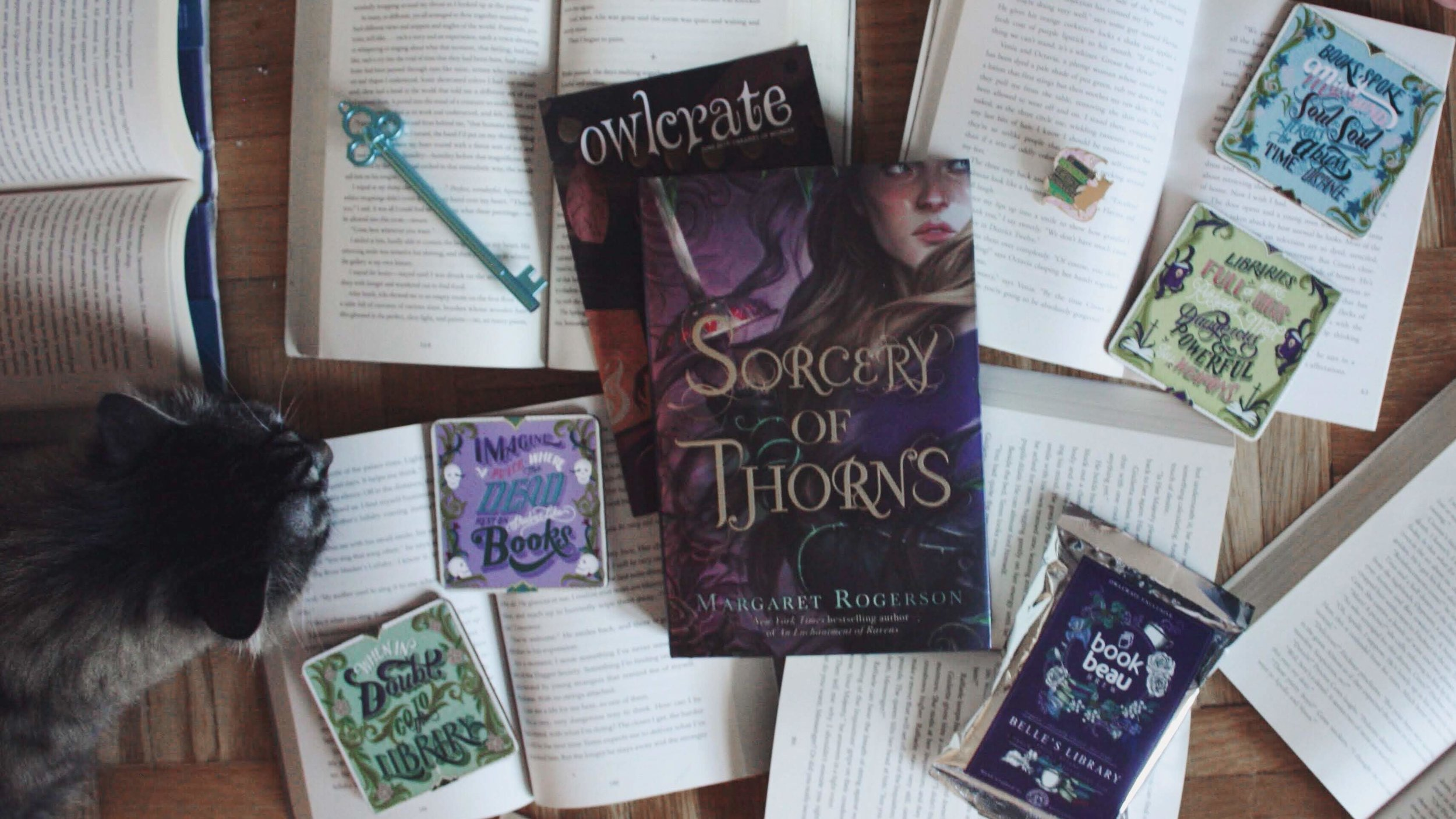 """Sorcery of Thorns"" and a few other of the items included in the June OwlCrate box. Sniffing on the left side is my cat, Irene."