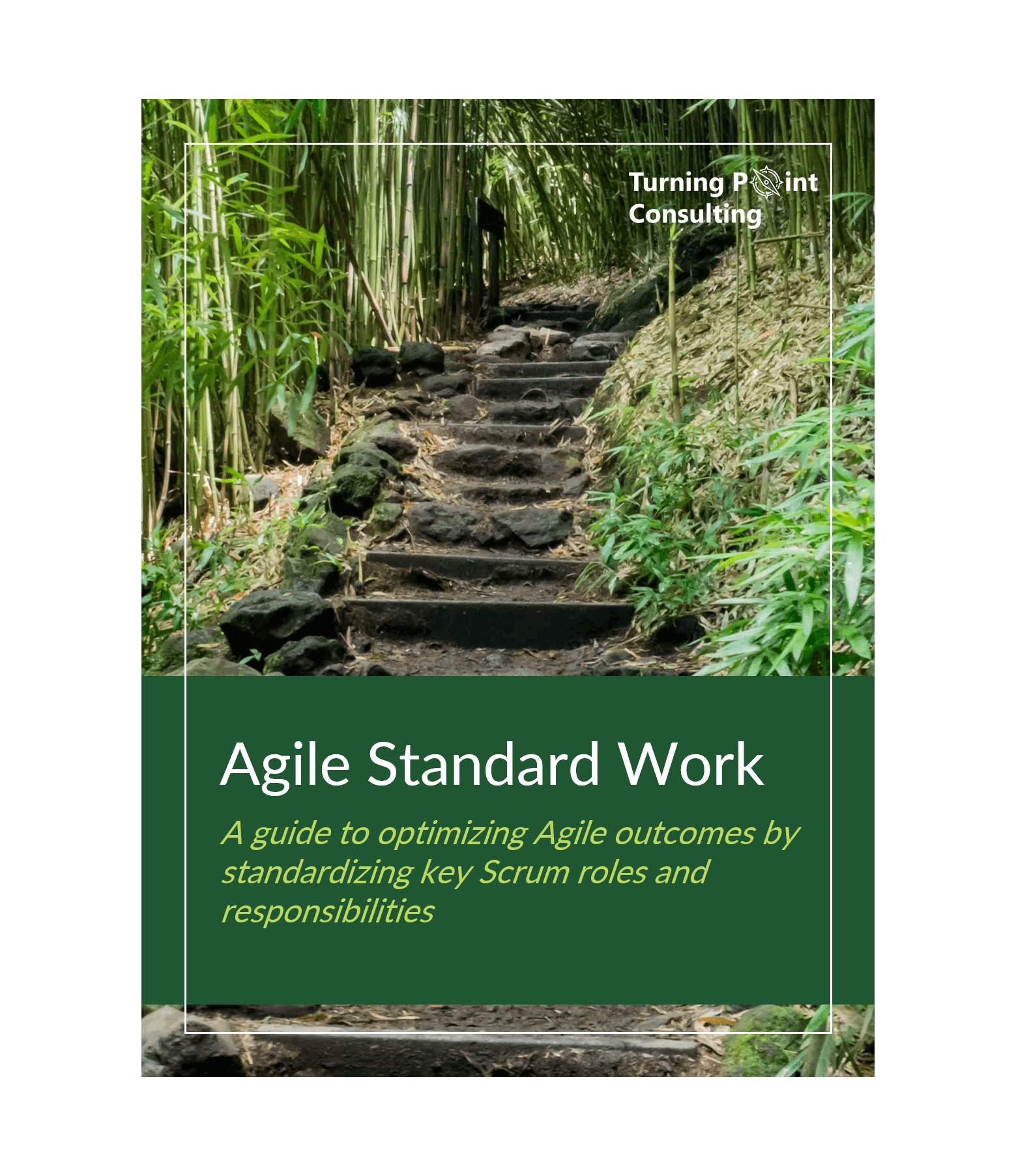 Agile Standard Work Turning Point Consulting.png