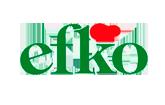BIG-Innovation-efko-Logo.png