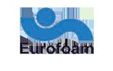 BIG-Innovation-Eurofoam-Logo.png
