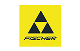BIG-Innovation-fischer-Logo.png