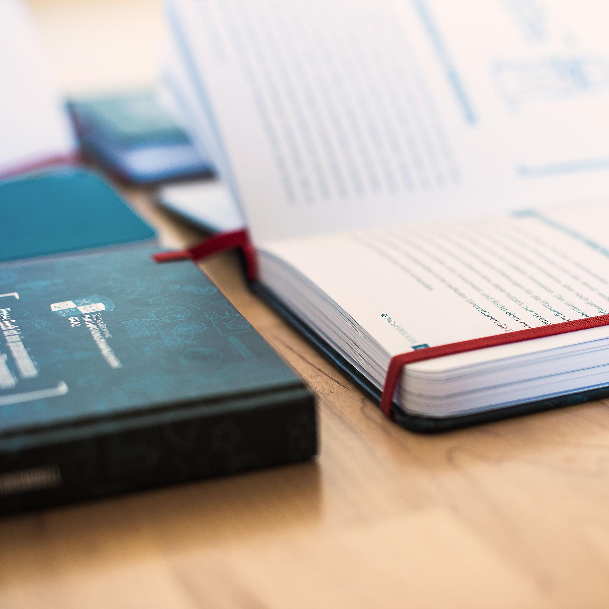 BIG-Picuture-Pocketbuch-2.jpg