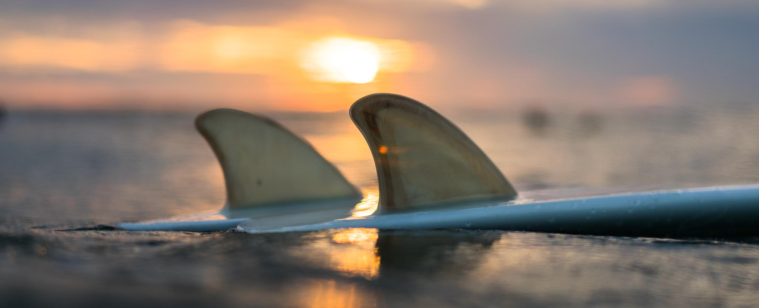 BannerAlong-Surfboards3.jpg