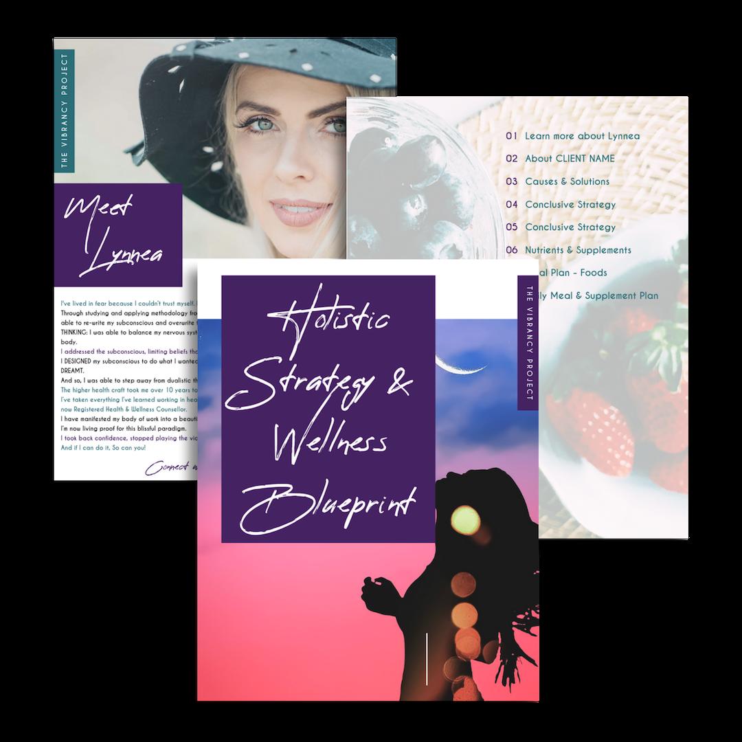 Holistic Strategy & Wellness Blueprint Workbook | The Vibrancy Project