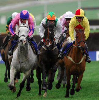 Cheltenham Races -