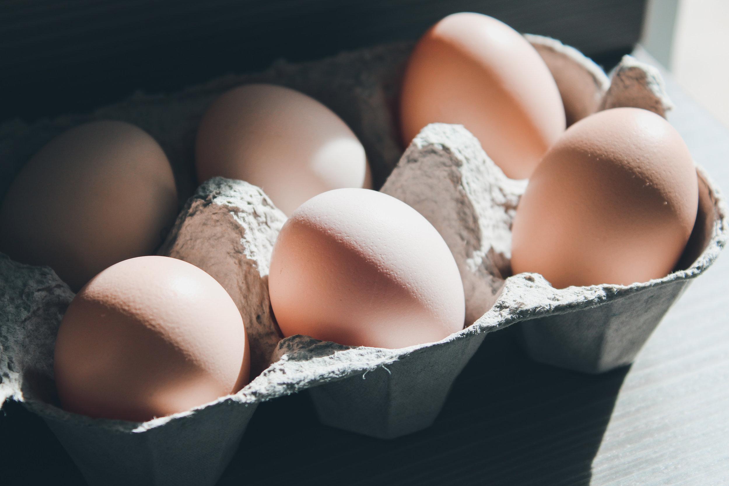 Lisha Newhall - Eggs.jpg