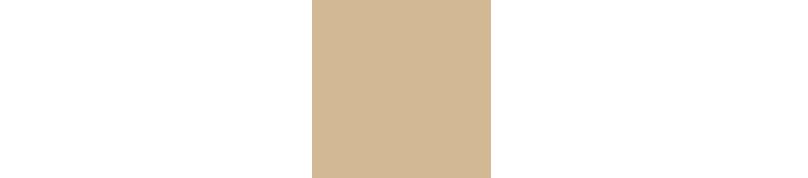 Nacherel Logo submark.png
