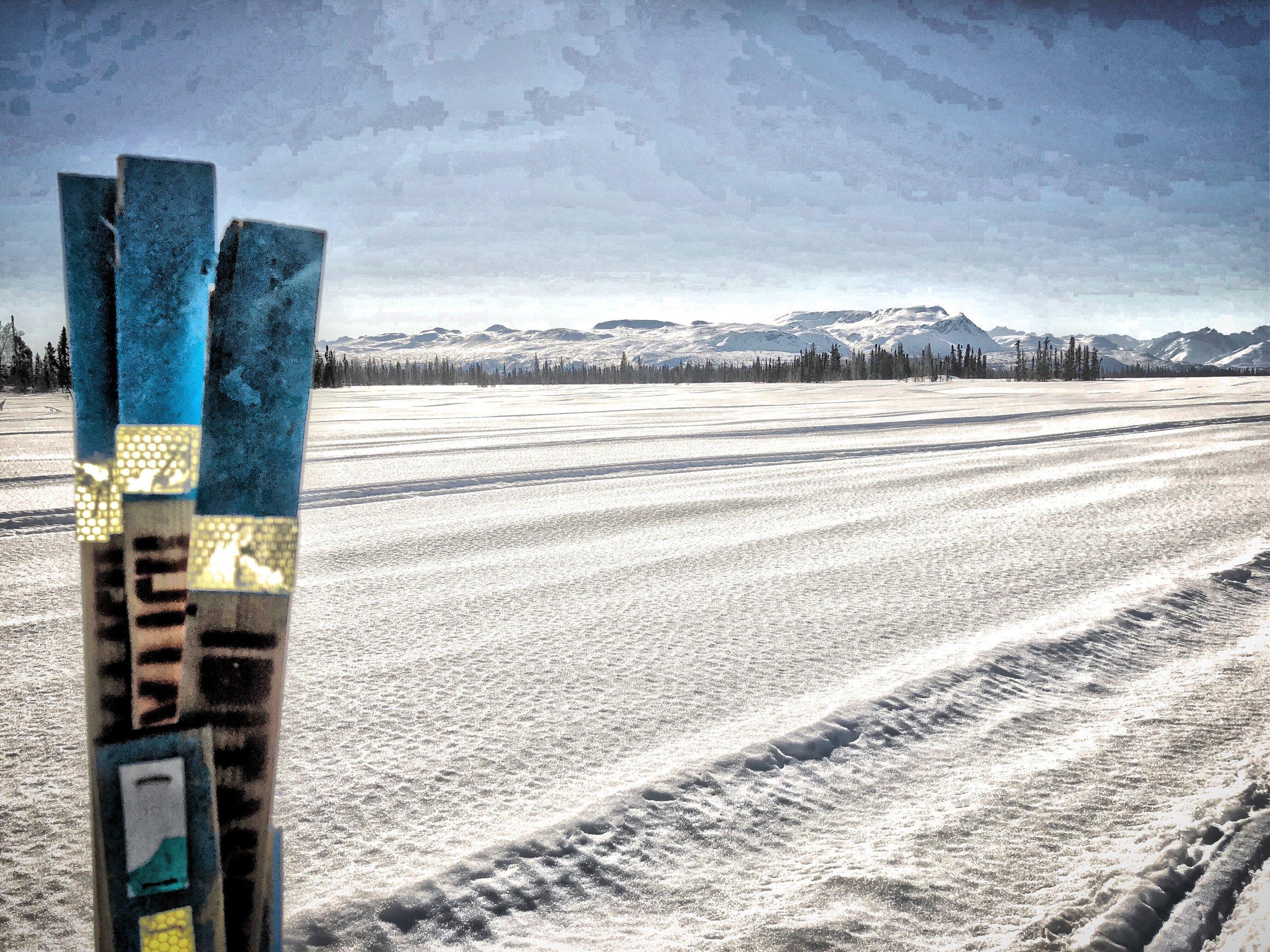 Iditasport Trail Markers- Shell Hills, Alaska