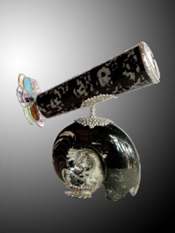 16310841_6_K 24 Ammonite.jpg