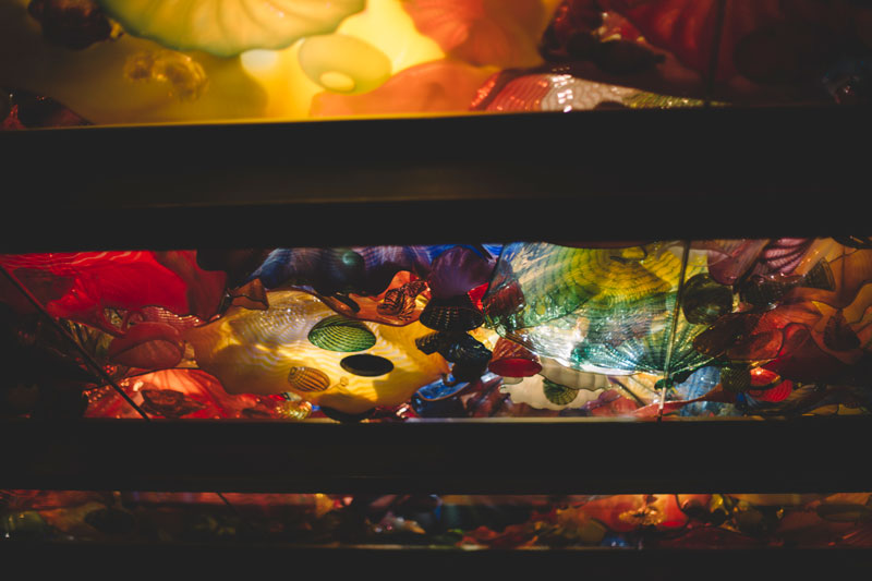 Monica-Galvan-Photography_Seattle-Washington_Chihuly-Garden-and-Glass-Museum_174