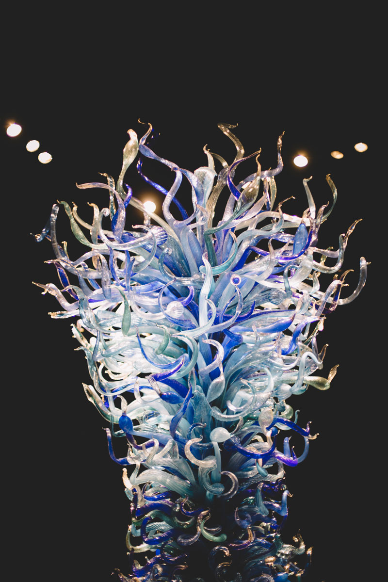 Monica-Galvan-Photography_Seattle-Washington_Chihuly-Garden-and-Glass-Museum_169