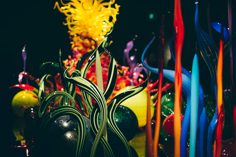 Monica-Galvan-Photography_Seattle-Washington_Chihuly-Garden-and-Glass-Museum_191