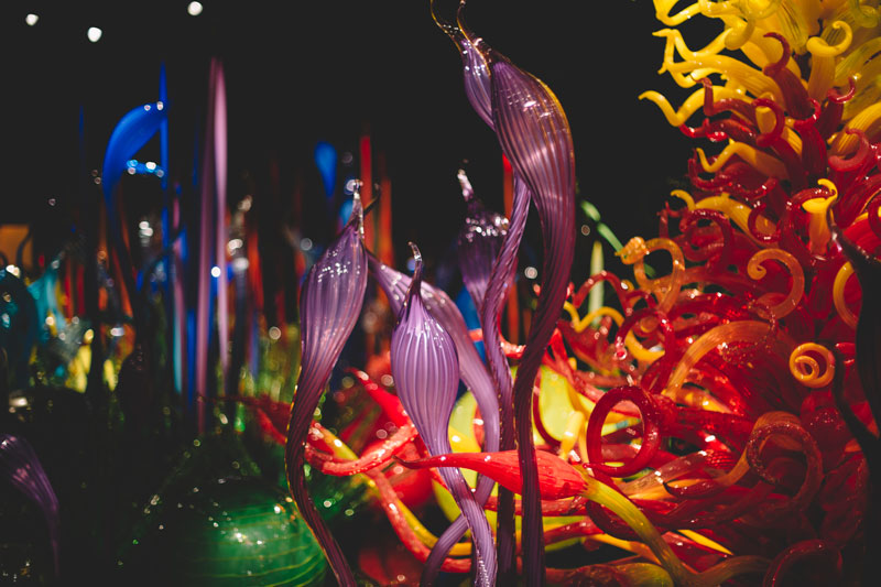 Monica-Galvan-Photography_Seattle-Washington_Chihuly-Garden-and-Glass-Museum_202