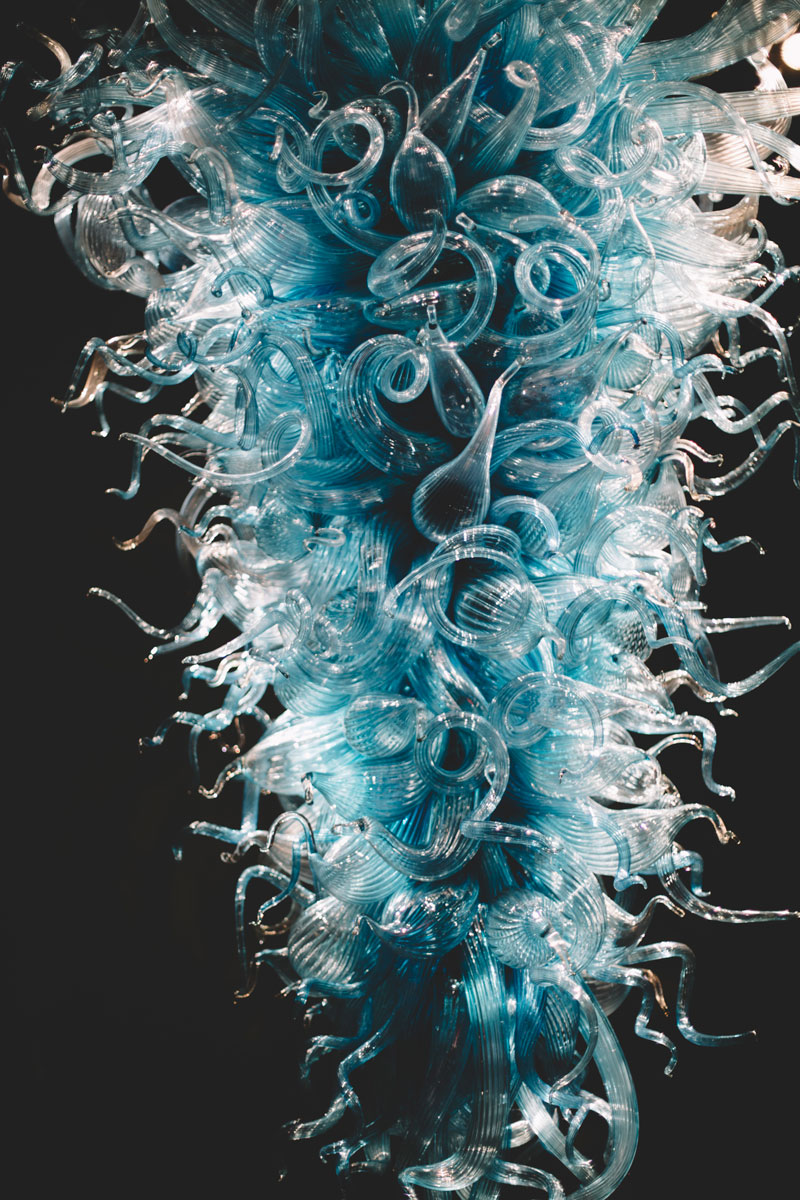 Monica-Galvan-Photography_Seattle-Washington_Chihuly-Garden-and-Glass-Museum_208