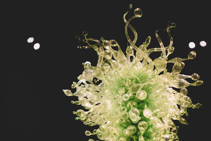 Monica-Galvan-Photography_Seattle-Washington_Chihuly-Garden-and-Glass-Museum_216