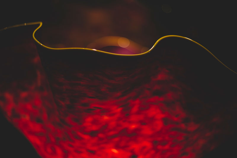 Monica-Galvan-Photography_Seattle-Washington_Chihuly-Garden-and-Glass-Museum_229