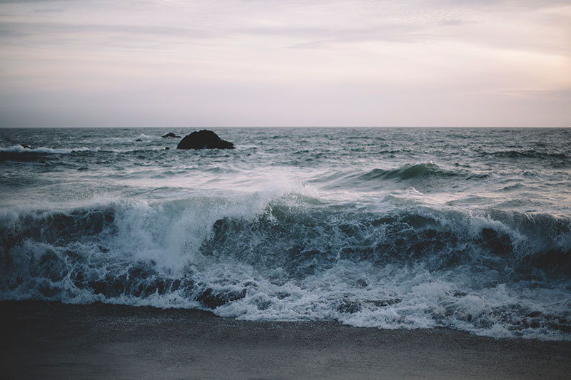 Bodega Bay California